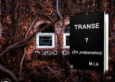 Transe teaser 1