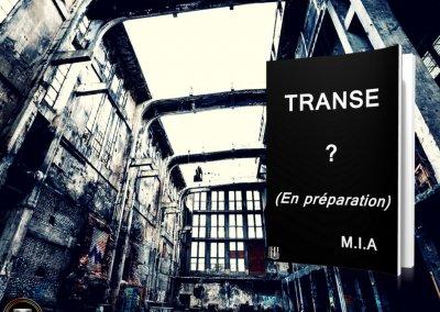 Transe teaser 2