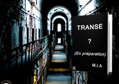 Transe teaser 3