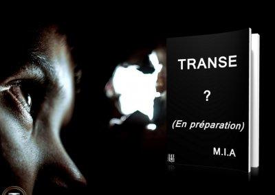 Transe teaser 4